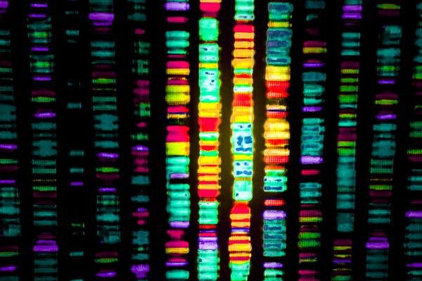 US Supreme Court Rules that Human DNA Cannot be Patented